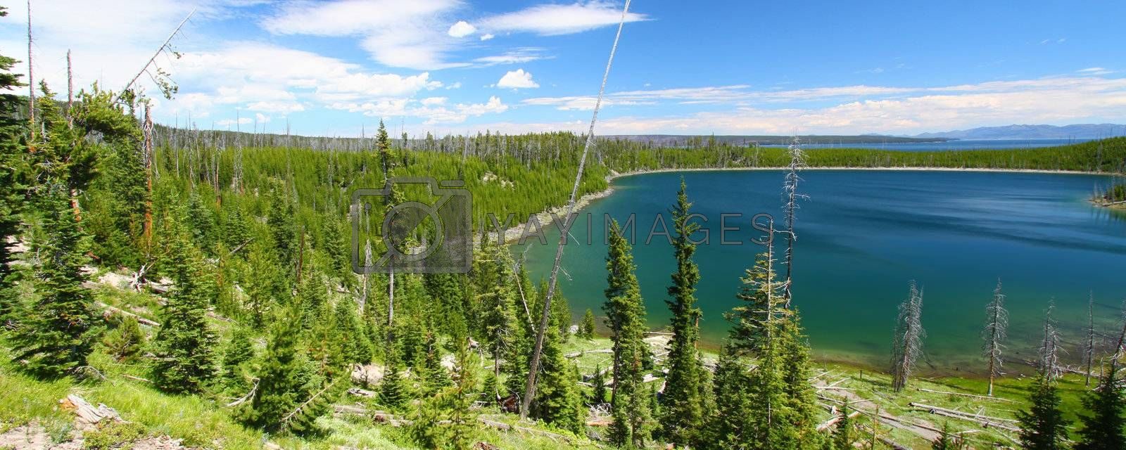Magnificent Duck Lake of Yellowstone National Park on a summer day - Wyoming, USA.