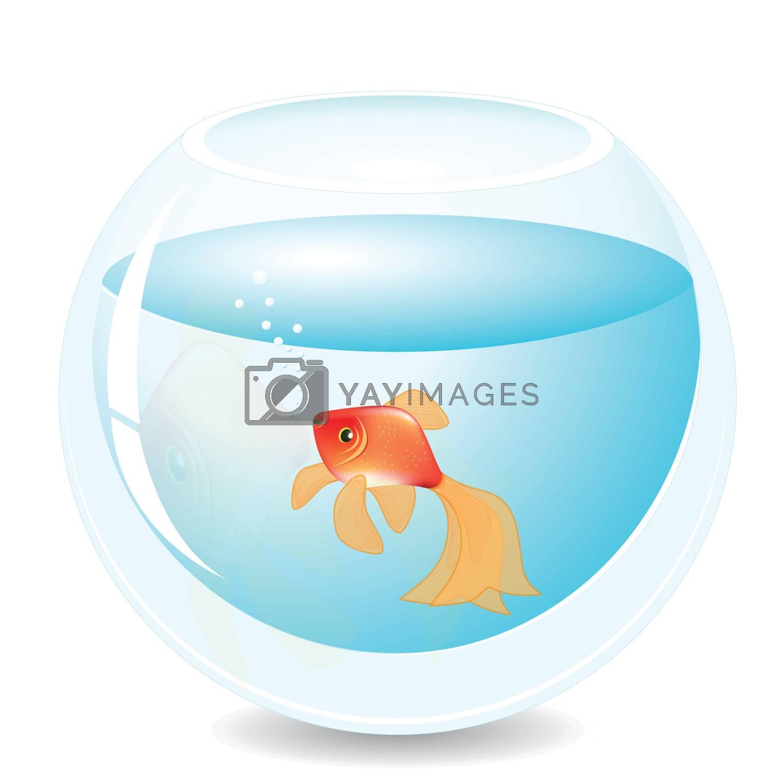 illustration, solitary red fish in blue aquarium