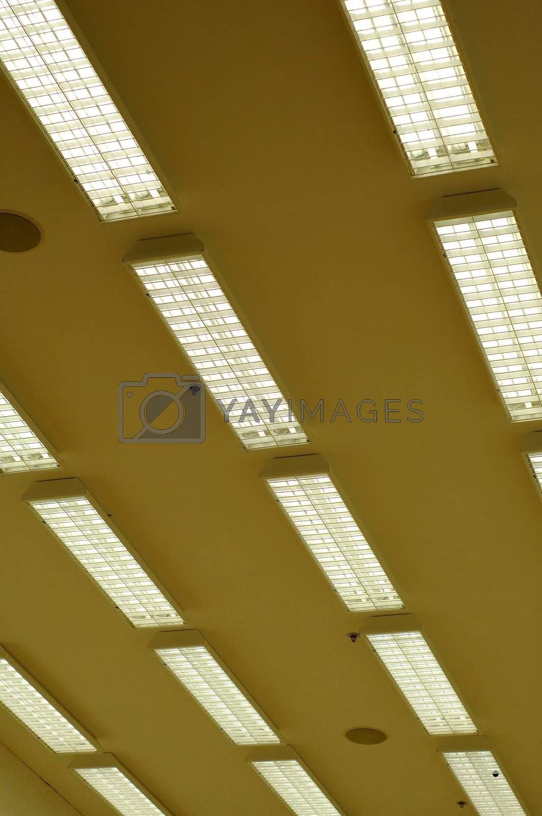 Row of fluorescent lamps by tito