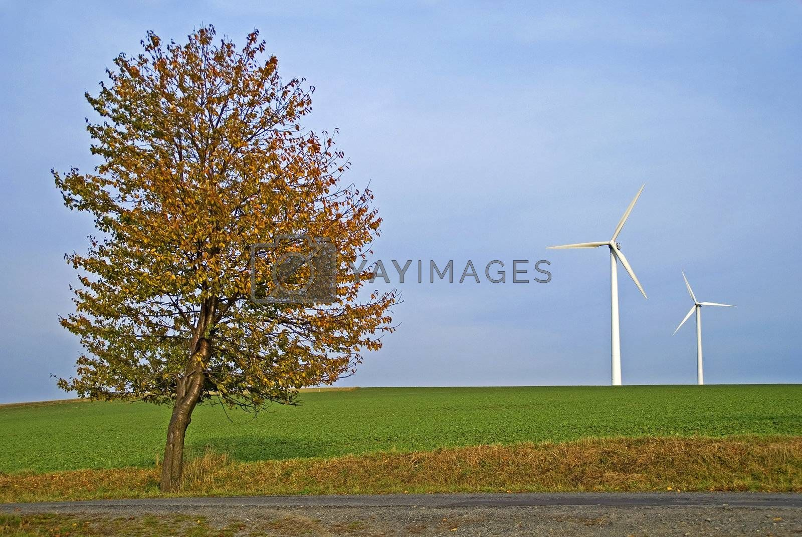 Field with autumn tree and two wind power plants