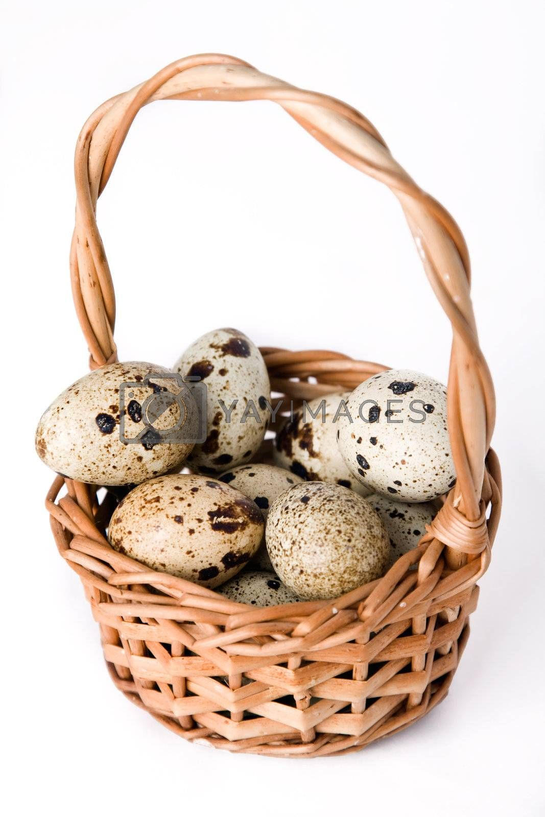 Quail eggs in basket isolated on a white background