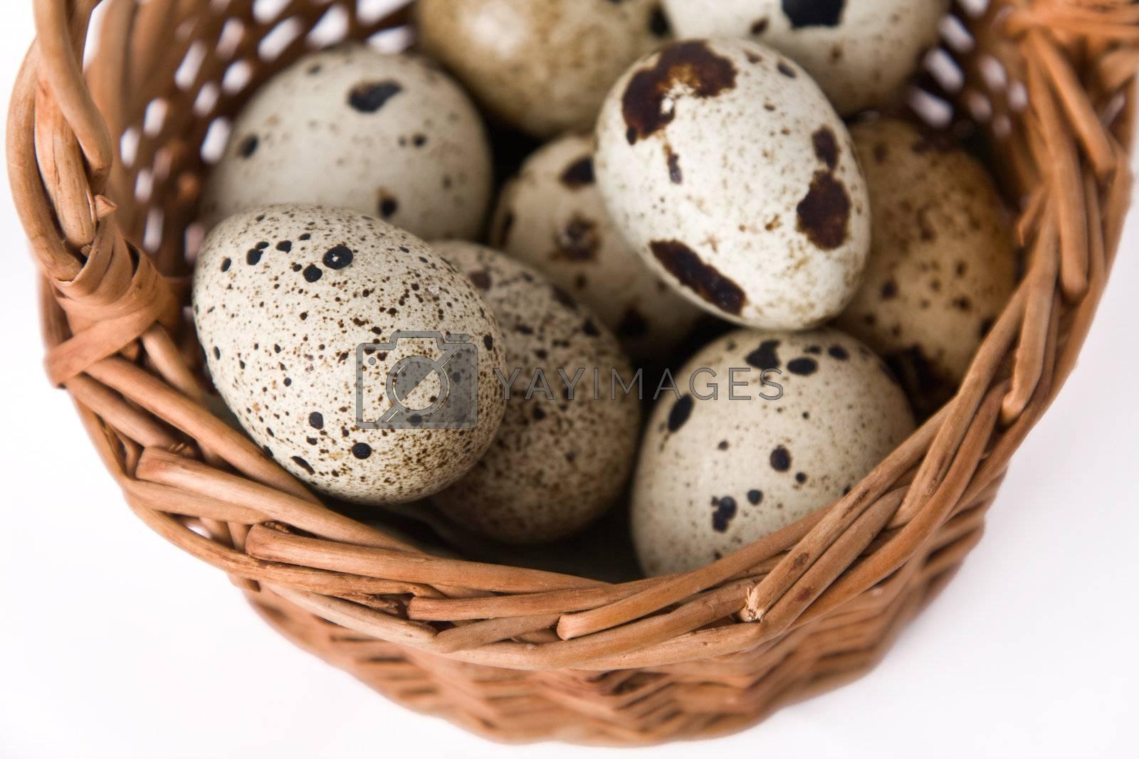 quail eggs by Shvydkova