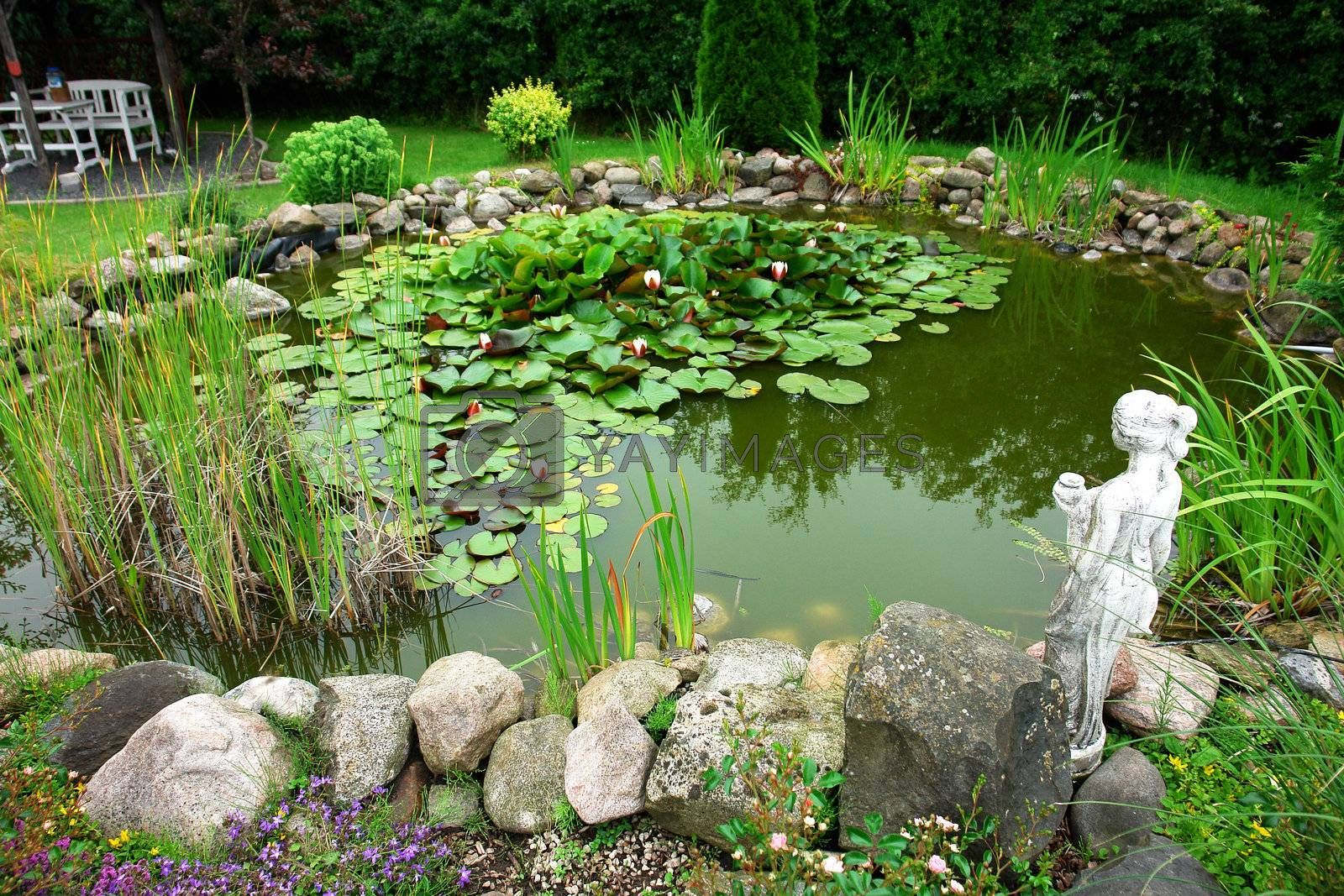 Beautiful classical garden fish pond gardening background Royalty Free  Stock Image | YAYIMAGES - Royalty Free Stock Photos and Vectors