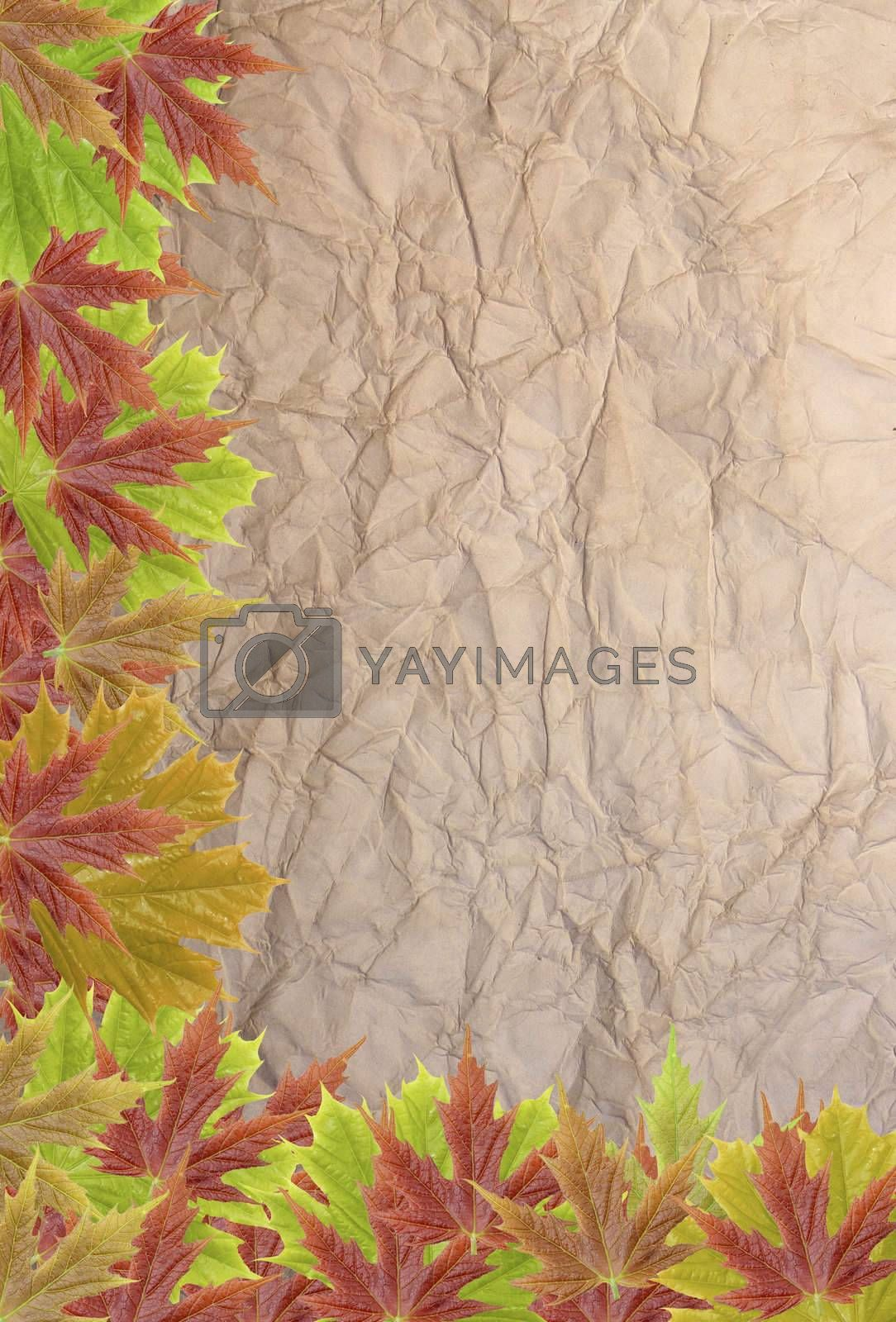 autumn background with blank old paper and leaves
