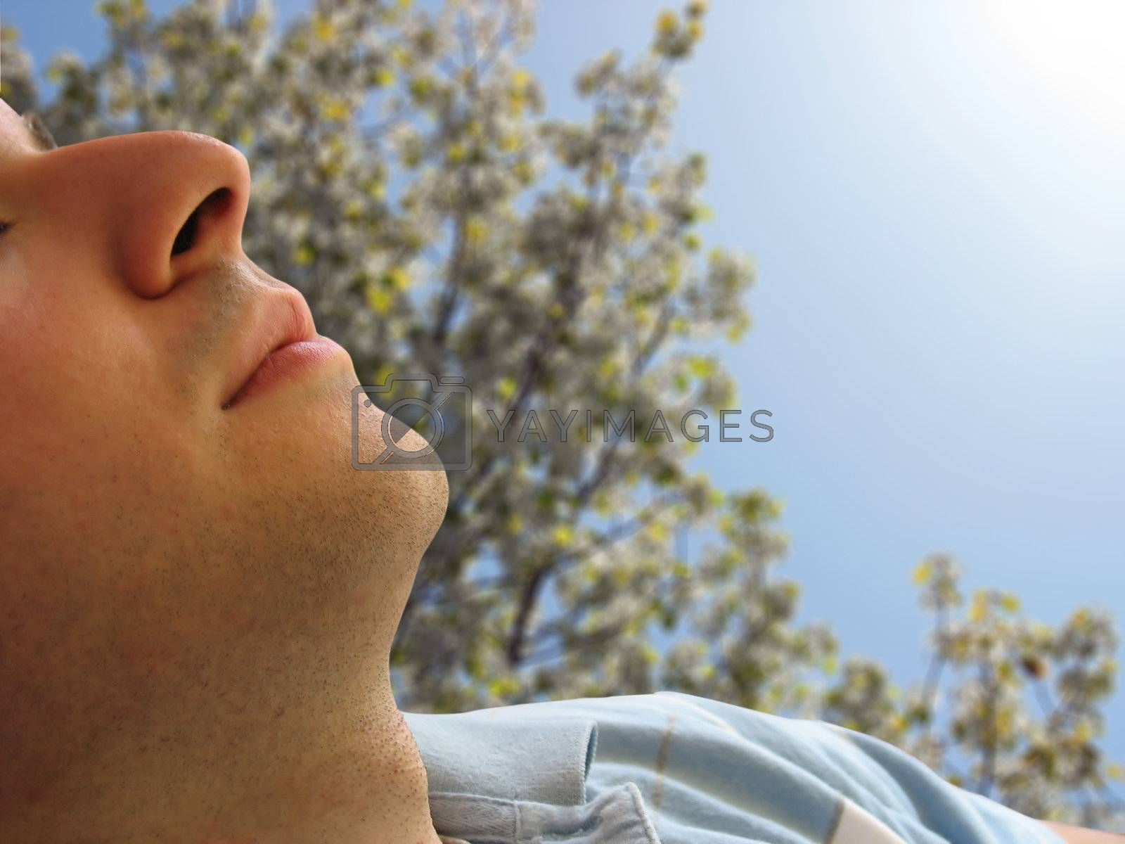 Shot of a man that looks to be sleeping - includes clipping path.