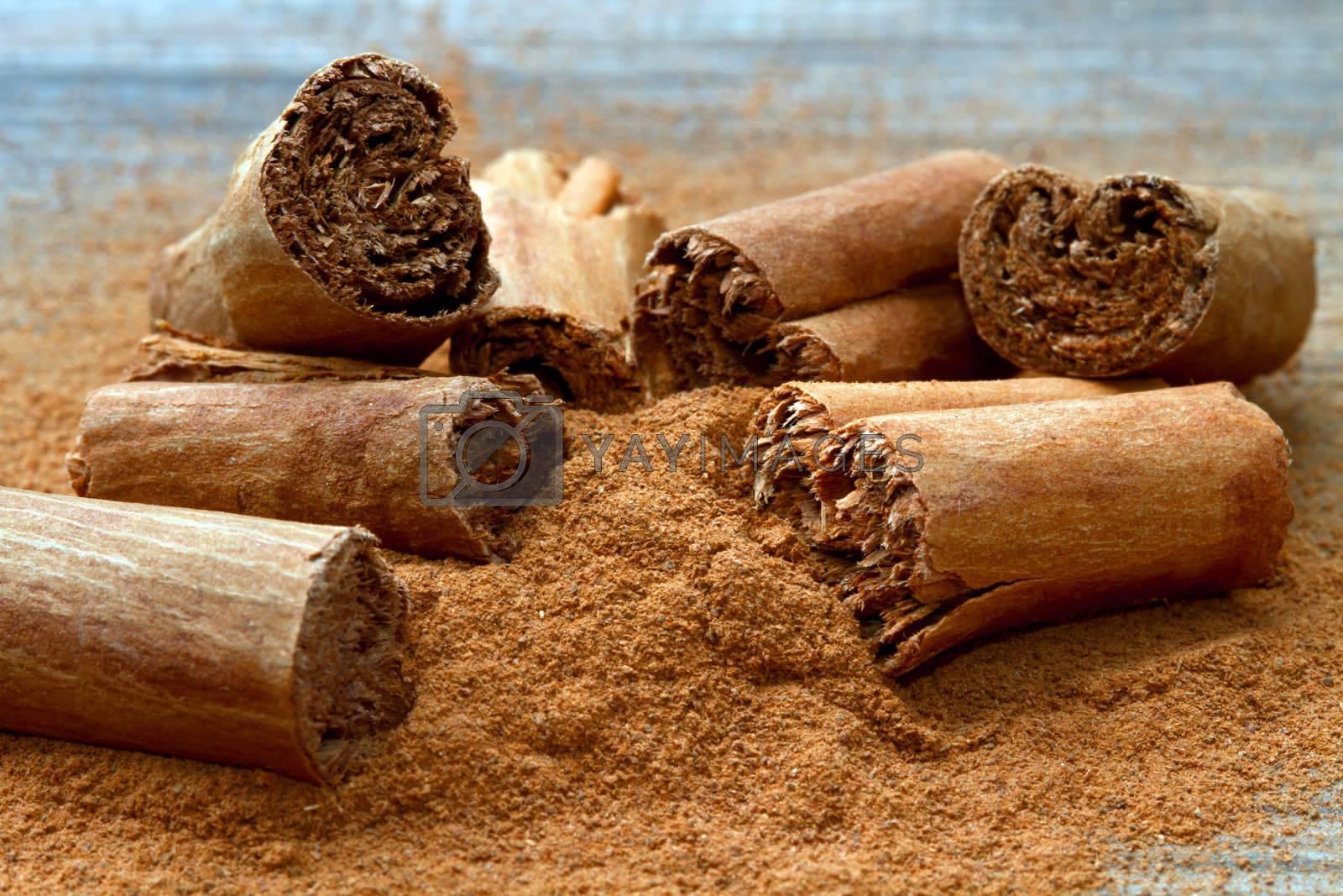 cinnamon by lsantilli