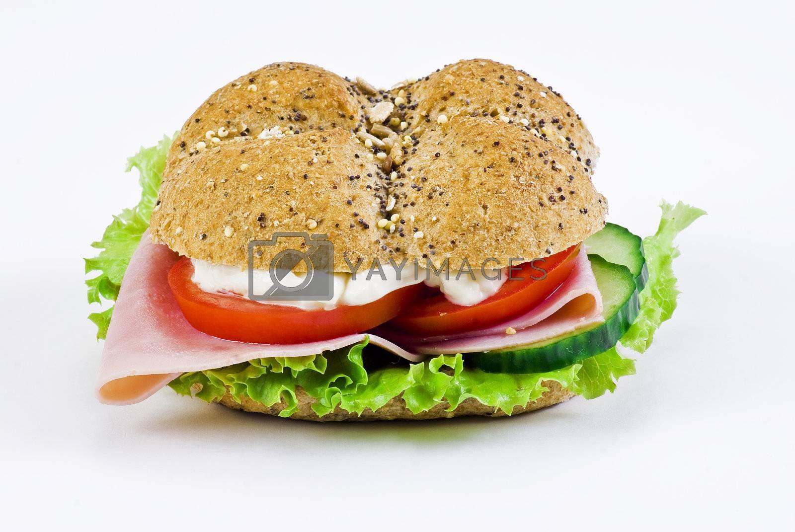 Freshly made sandwich by caldix