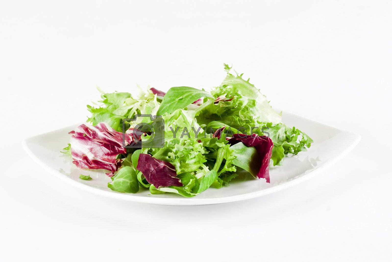 Crispy salad  by caldix