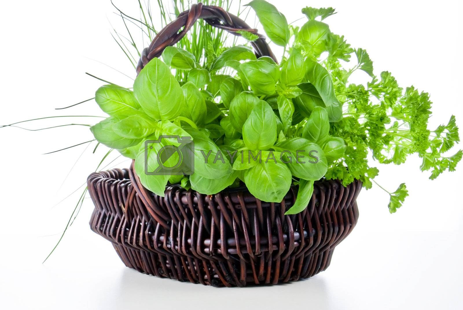 Basket of herbs by caldix