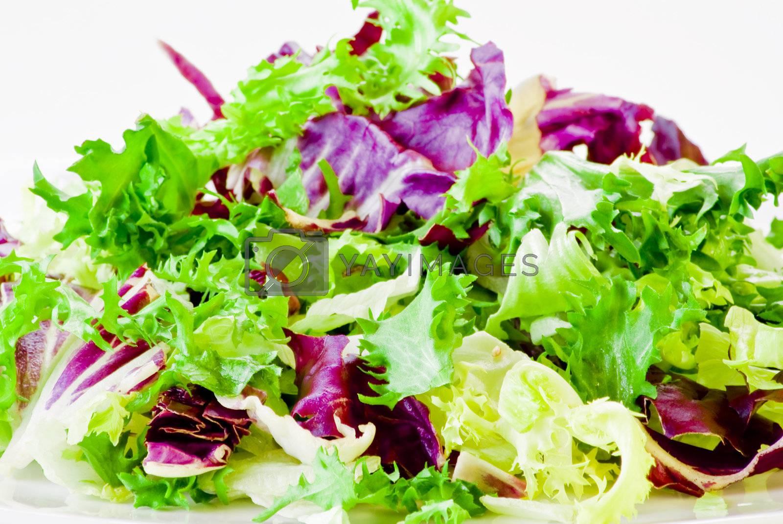 Various salad leaves by caldix