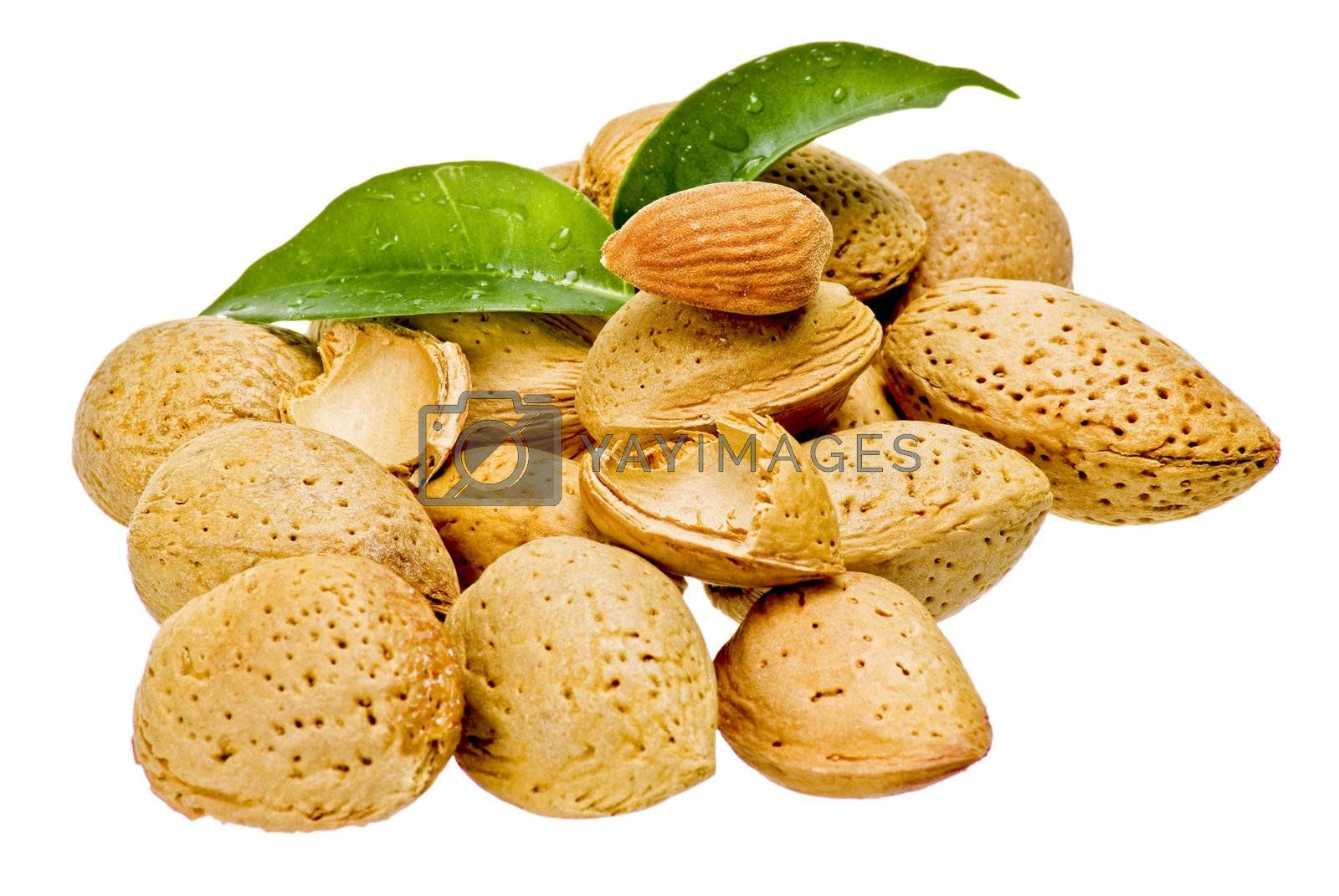 Almonds with kernel by caldix