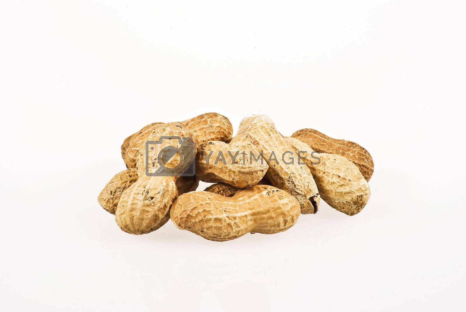 Peanuts by caldix