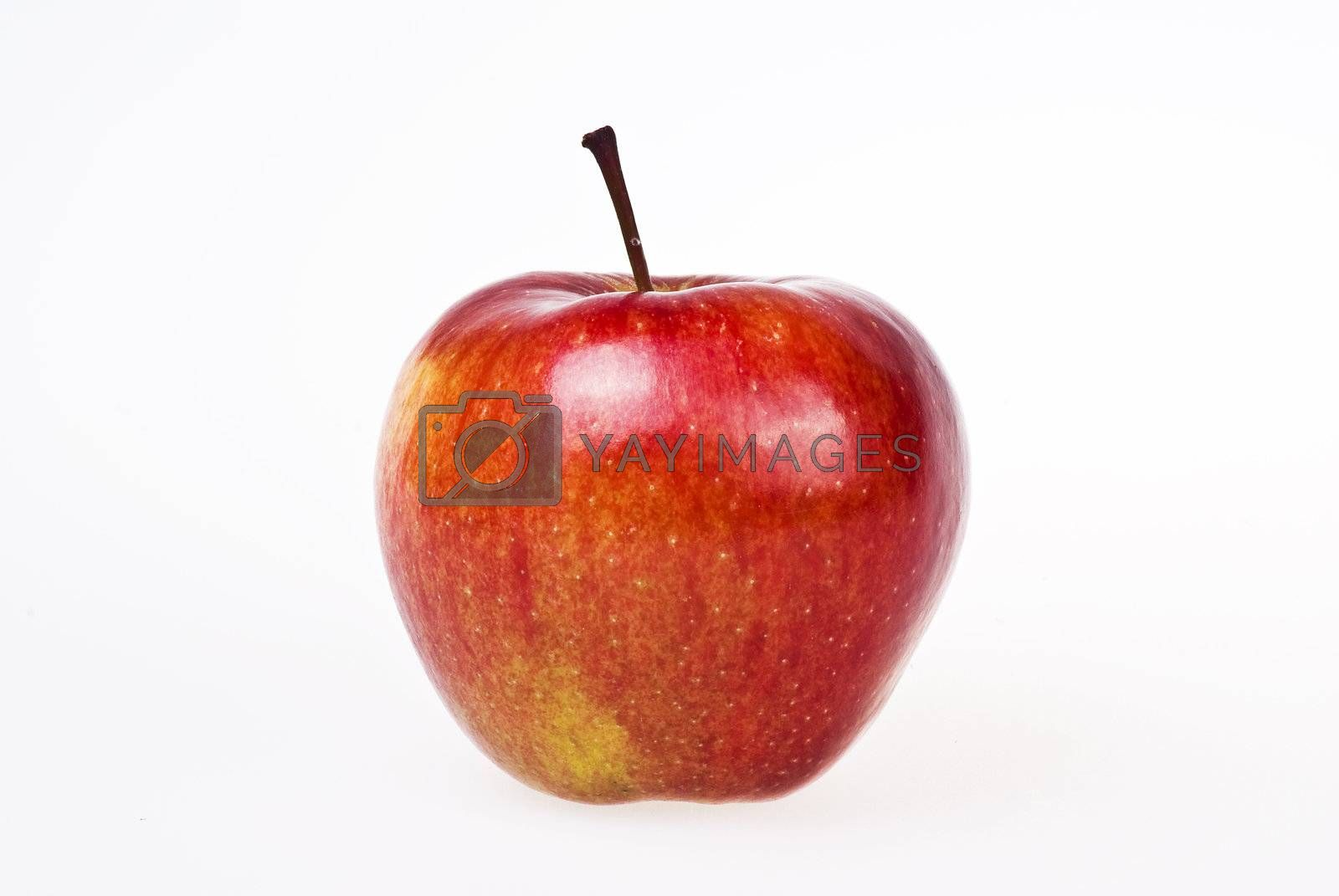 Red apple by caldix