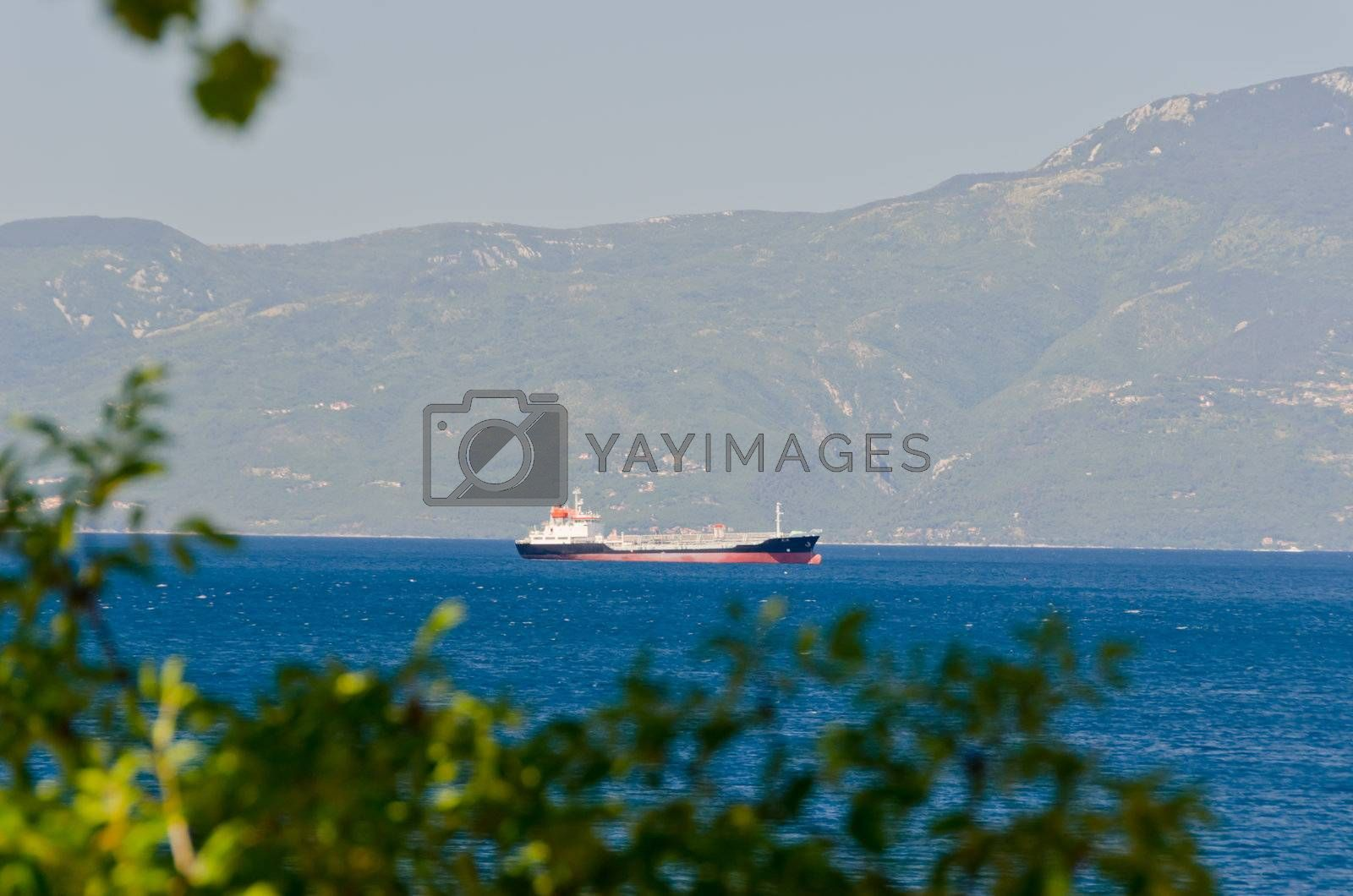 cargo boat cruising near mountain shore, first plan are blured plants