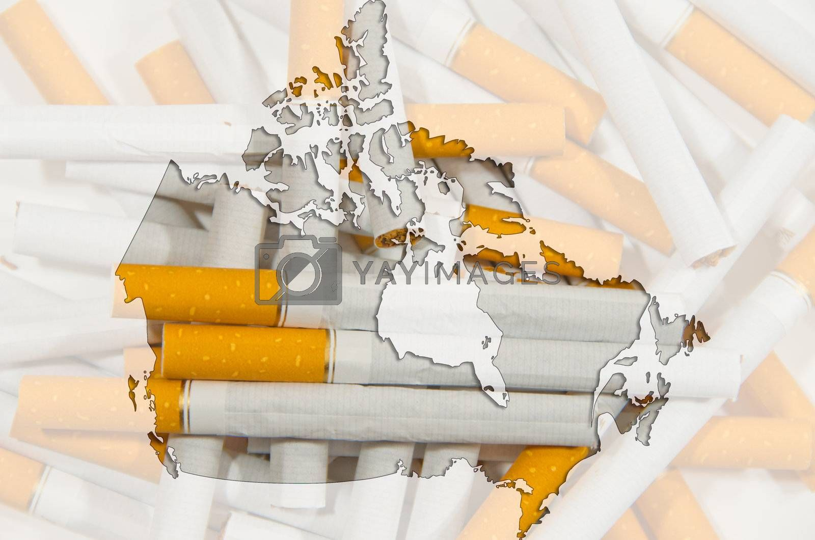 Outline map of Canada with cigarettes in background