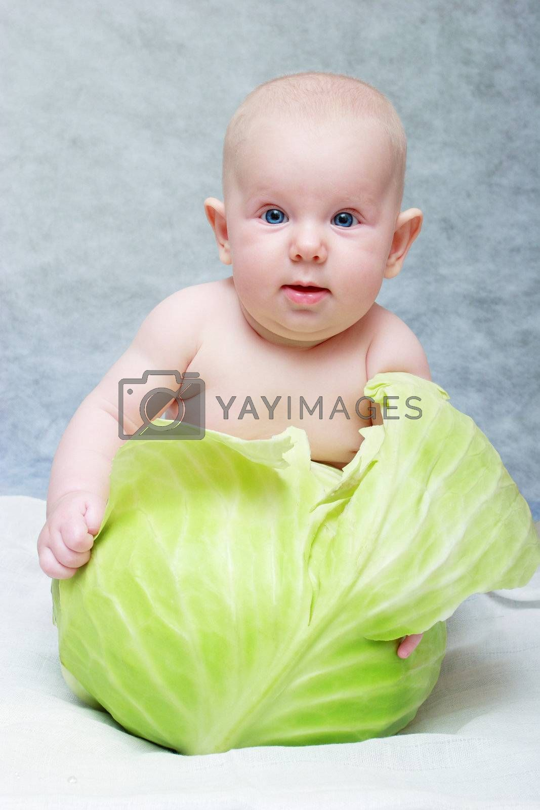 baby seat in cabbage