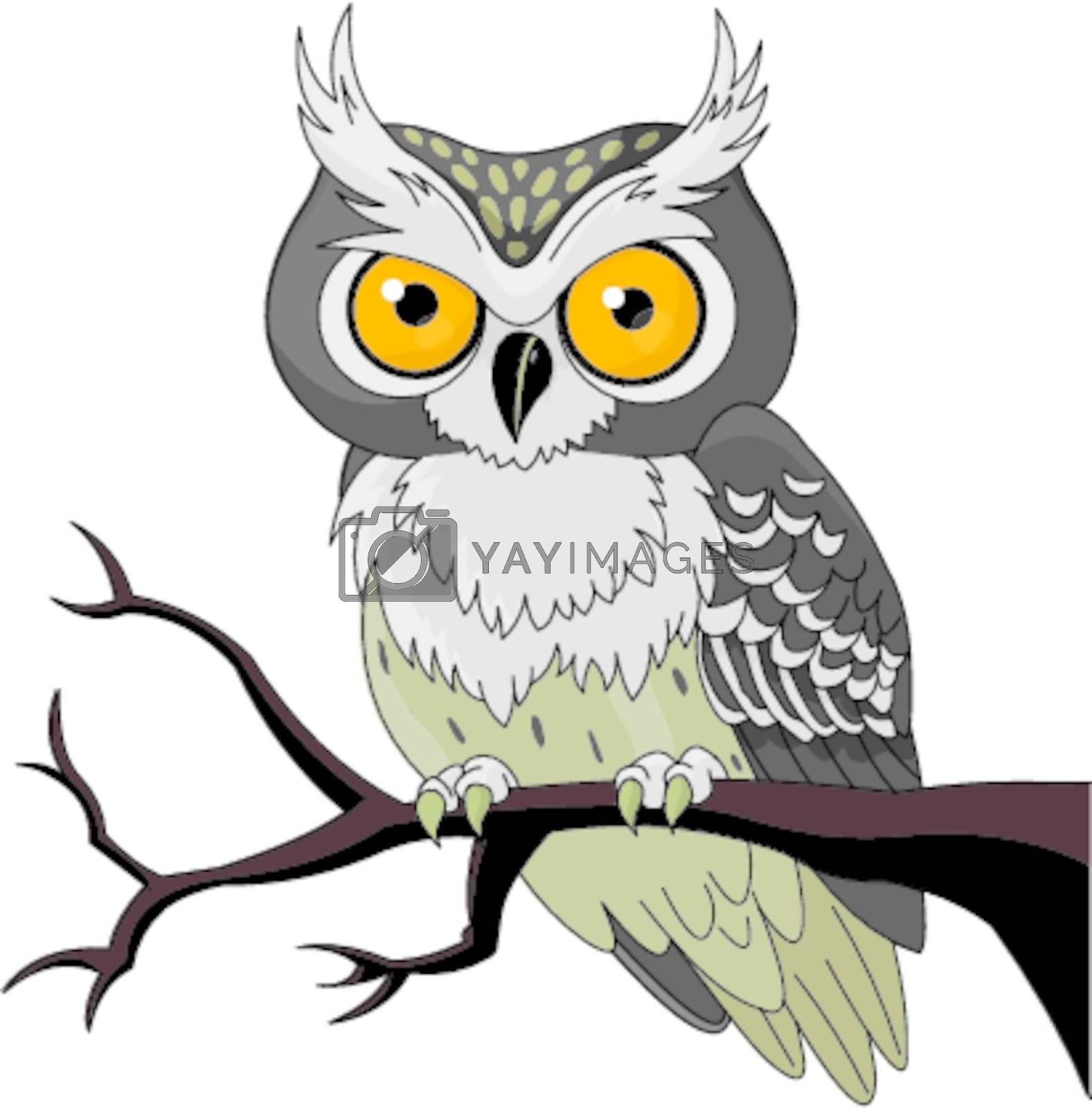 Owl sitting upon a tree branch