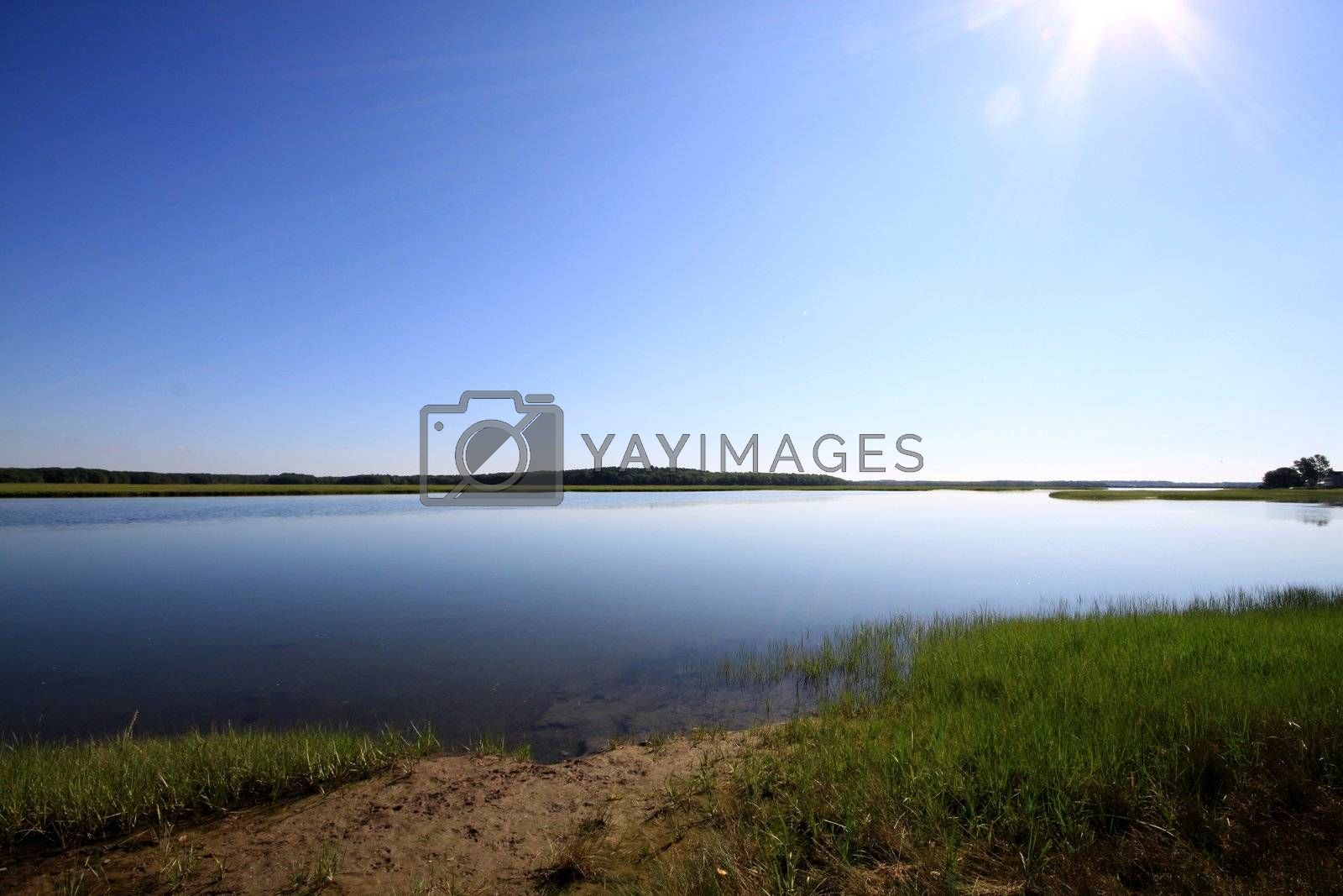 Marsh land in Scarborough Maine at high tide