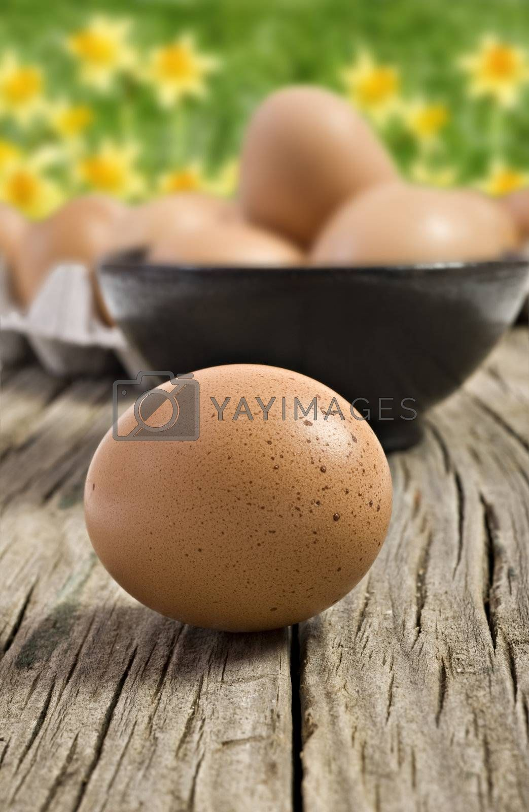Fresh farm eggs ready to be cooked by tish1