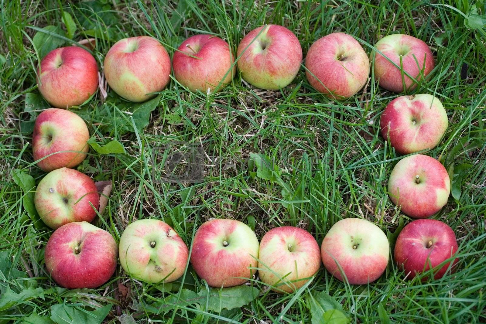 group food apple fruit decoration green background