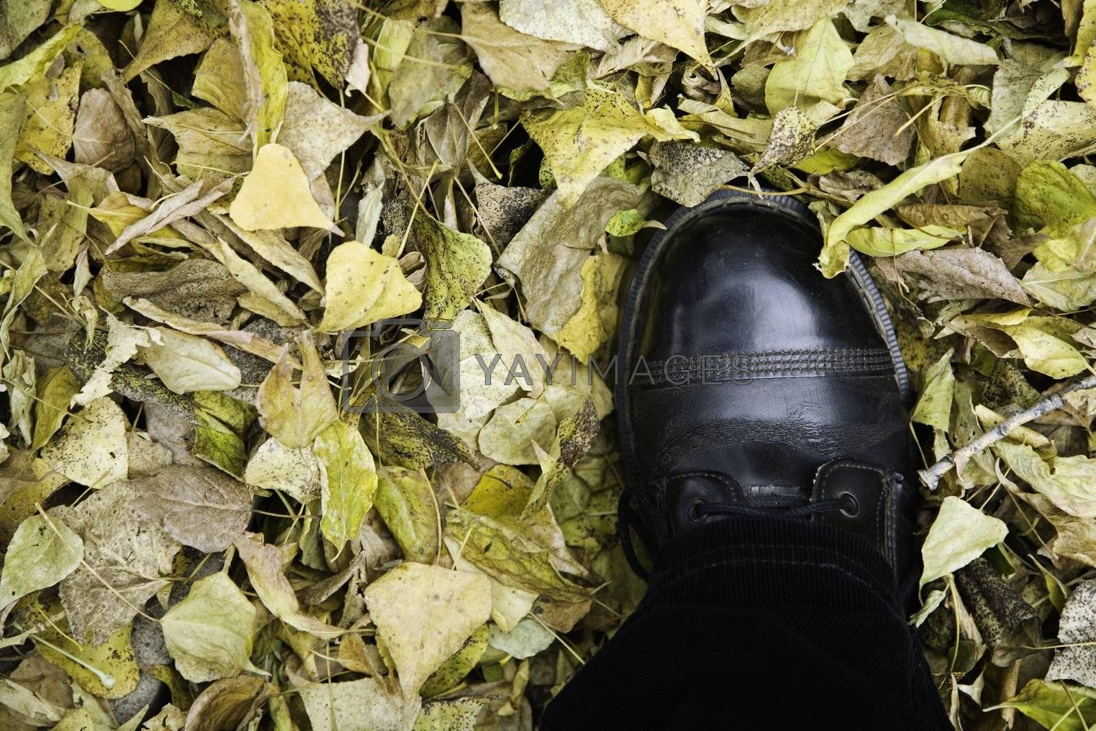autumn concept,focus point on the boot