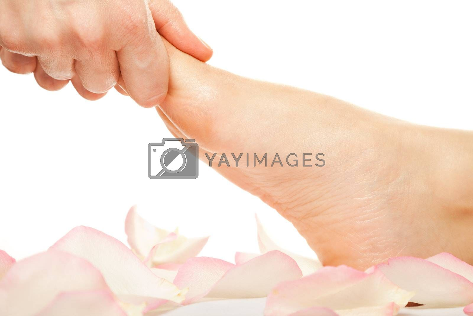 Close-up of  hands giving a foot massage isolated on white