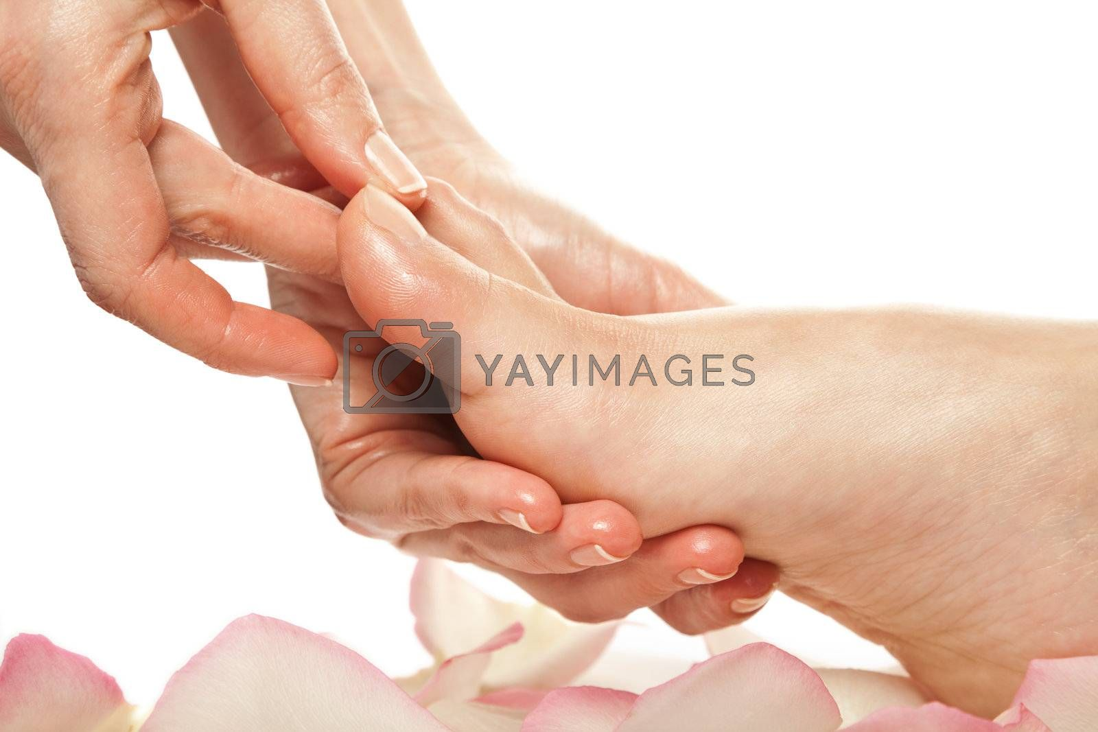 woman foot receiving gentle massage in a spa setting isolated