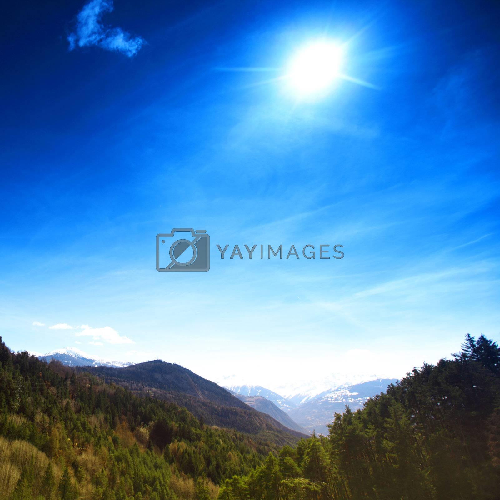 alpen mountain forest sun shine