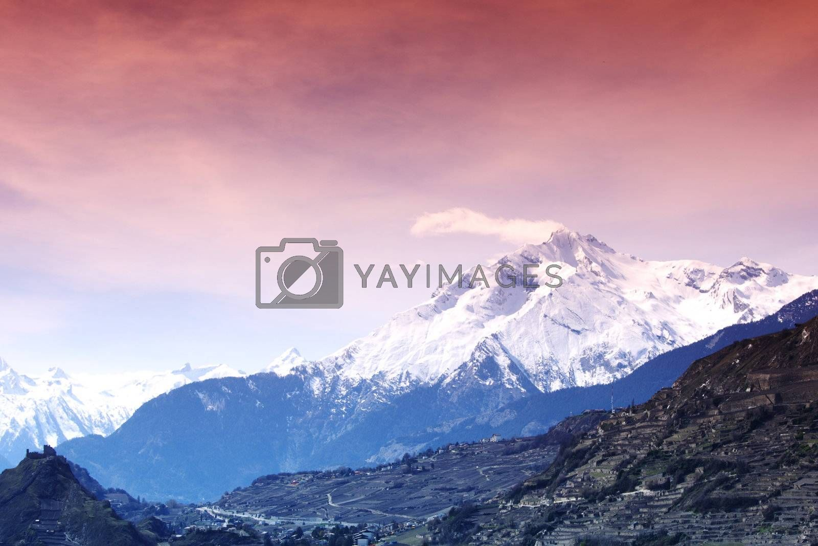 Royalty free image of mountain forest by Yellowj