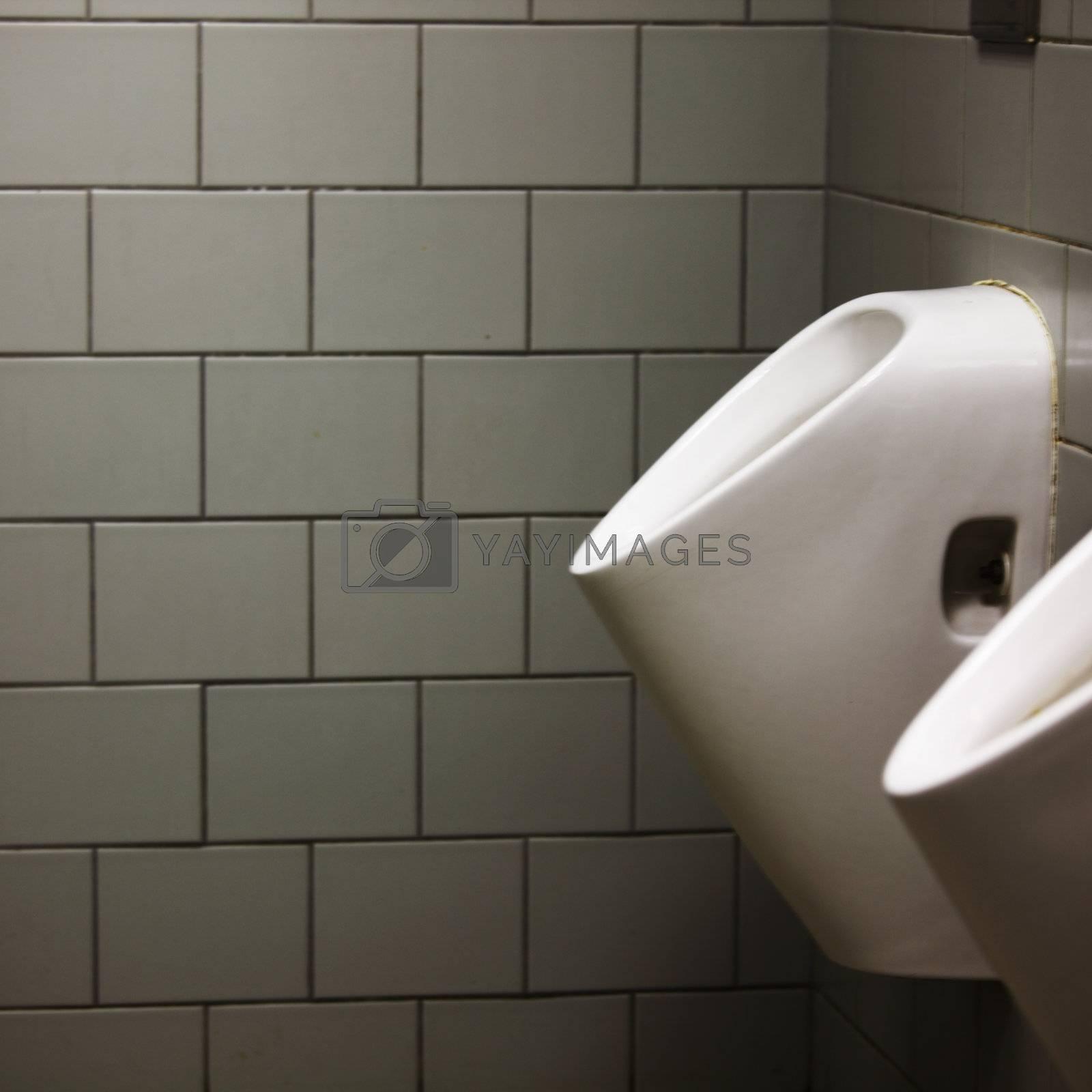 inside luxury modern toilet room
