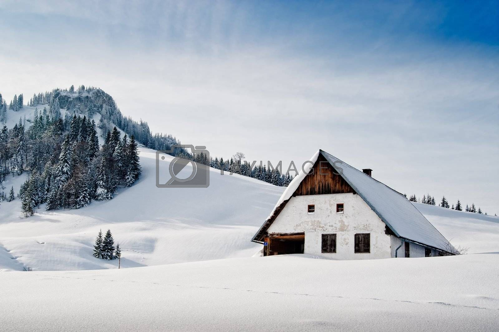 Winter idyllic with small hut in the austrian alps