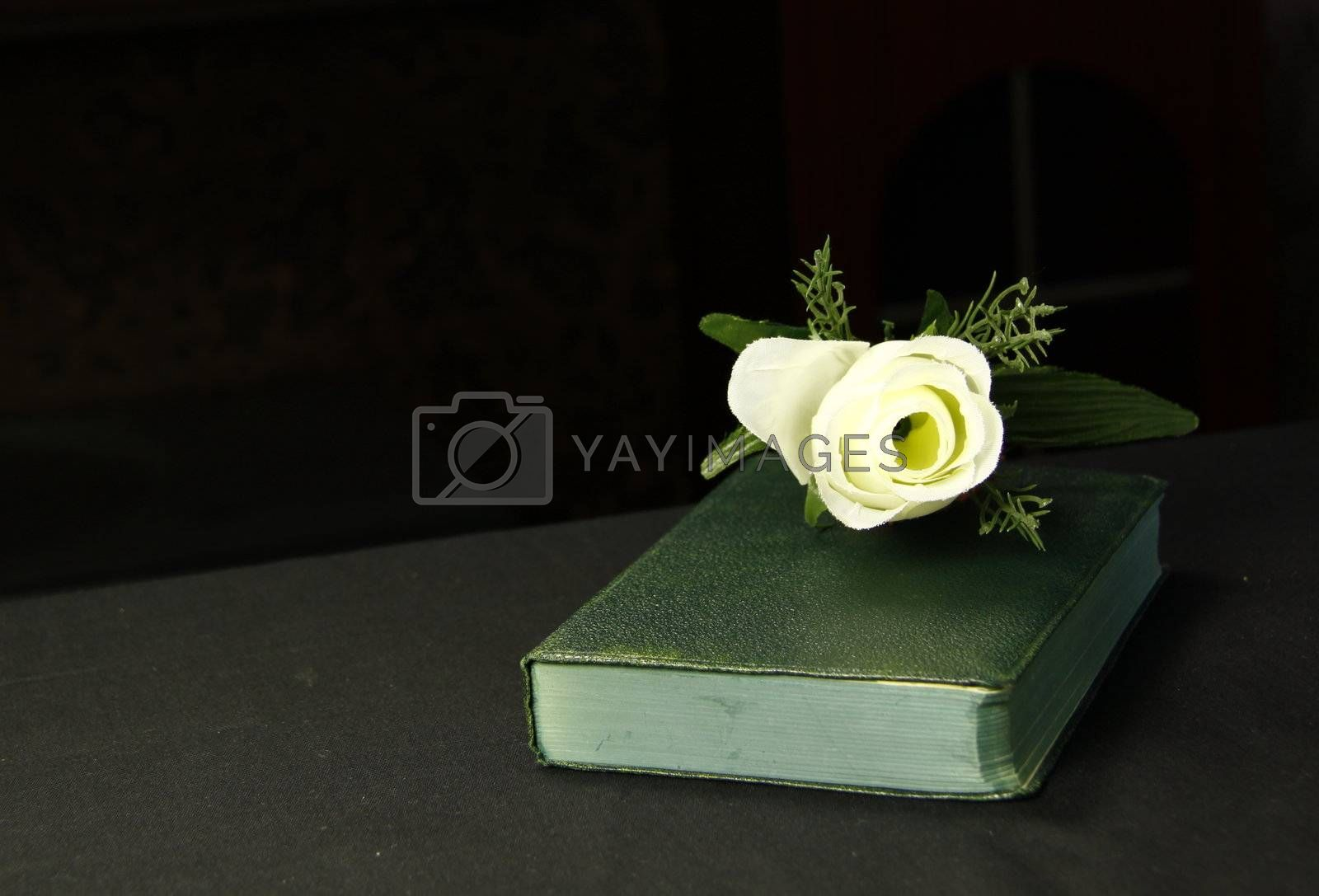 a rose next to a book depicting it could be a romantic novel
