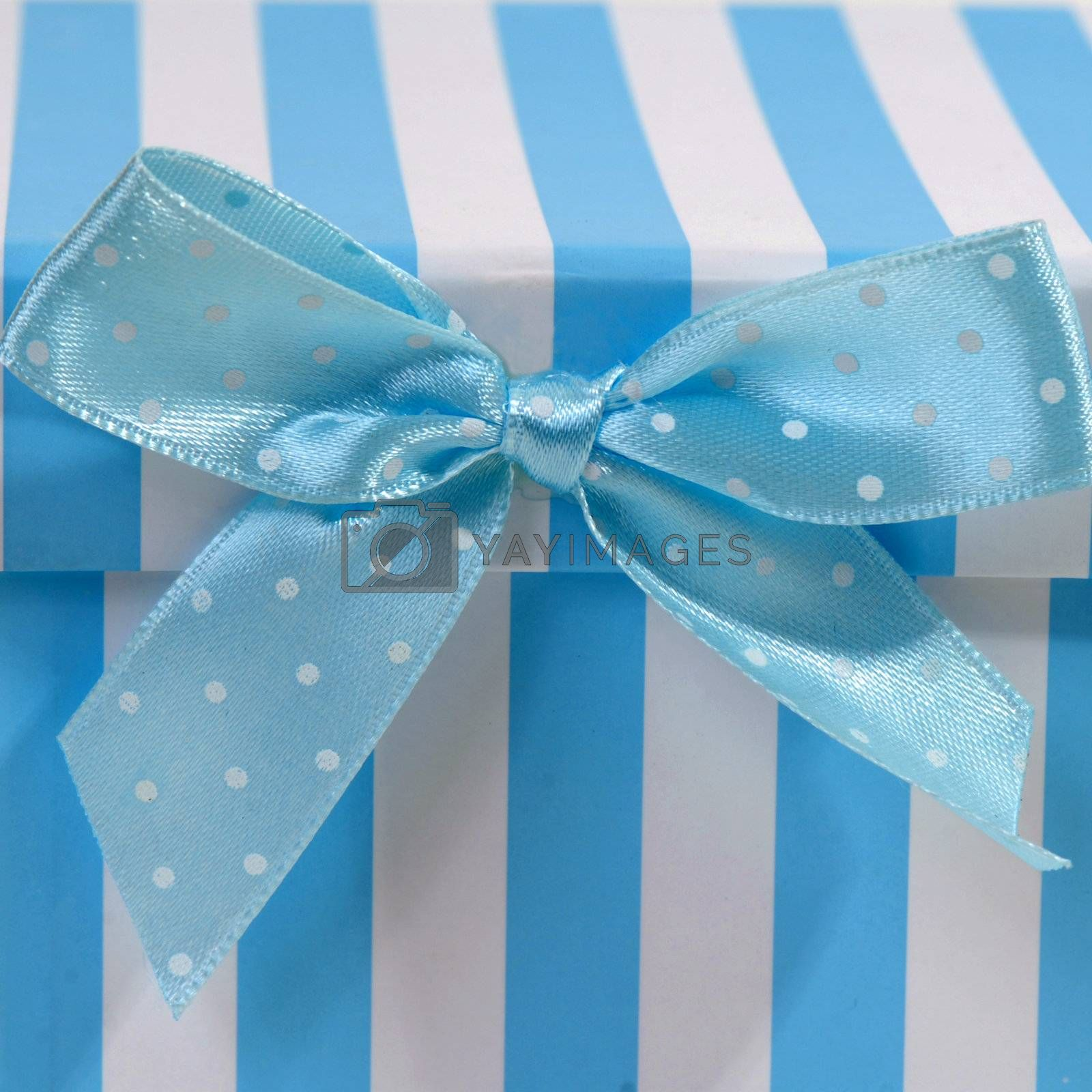 blue and white box with ribbon for gift