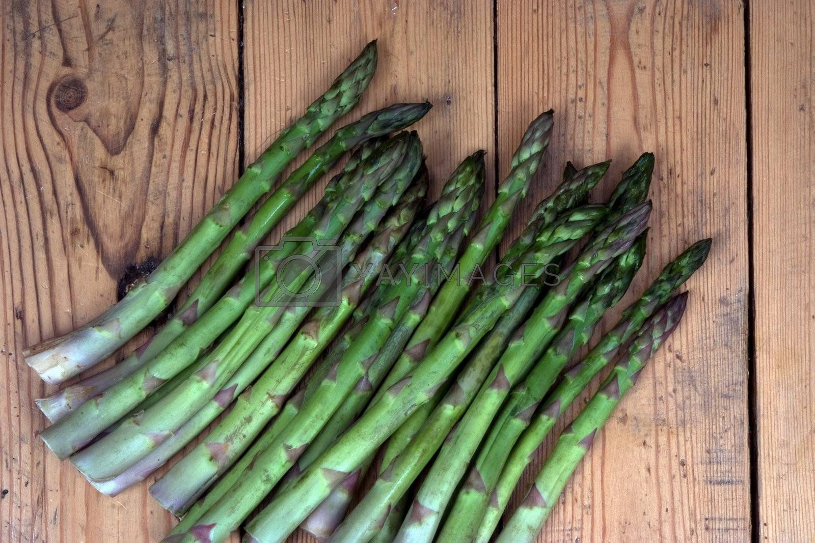 Group of freshly harvested asparagus on a garden bench