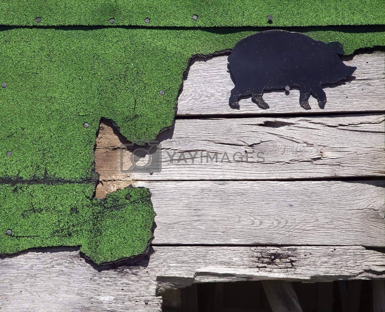Wooden siding with green turf and pig drawing.