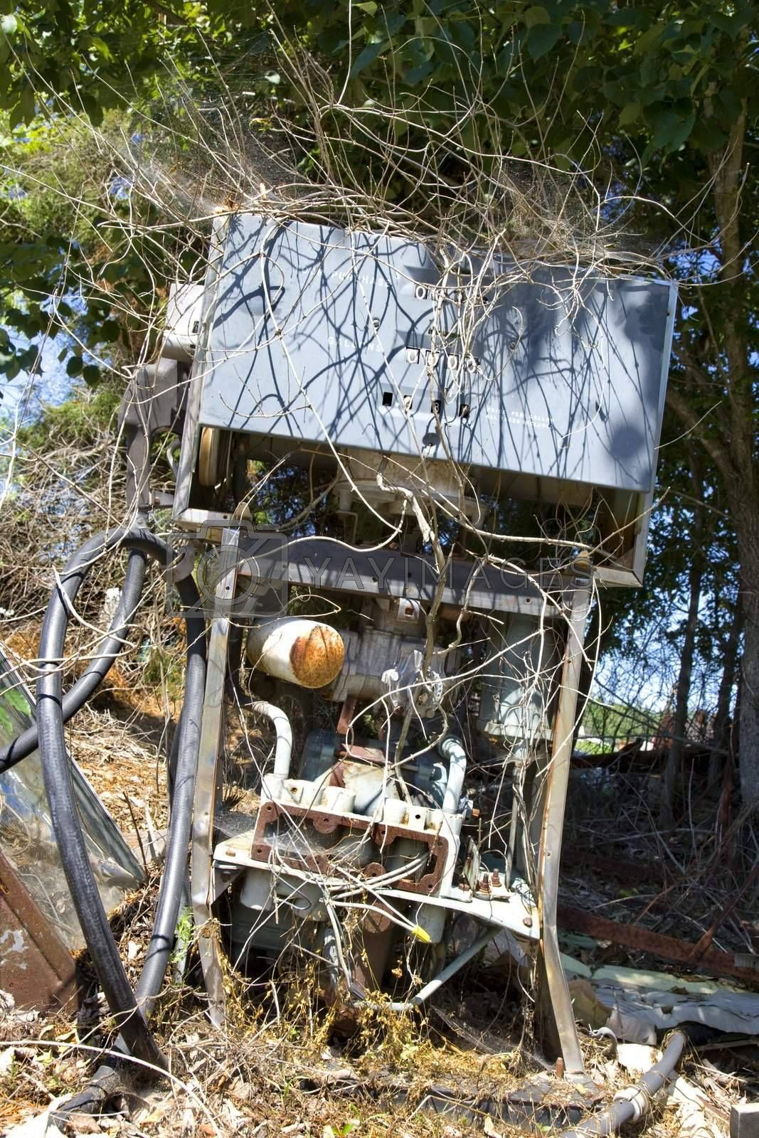 Old broken gasoline pump covered with weeds.