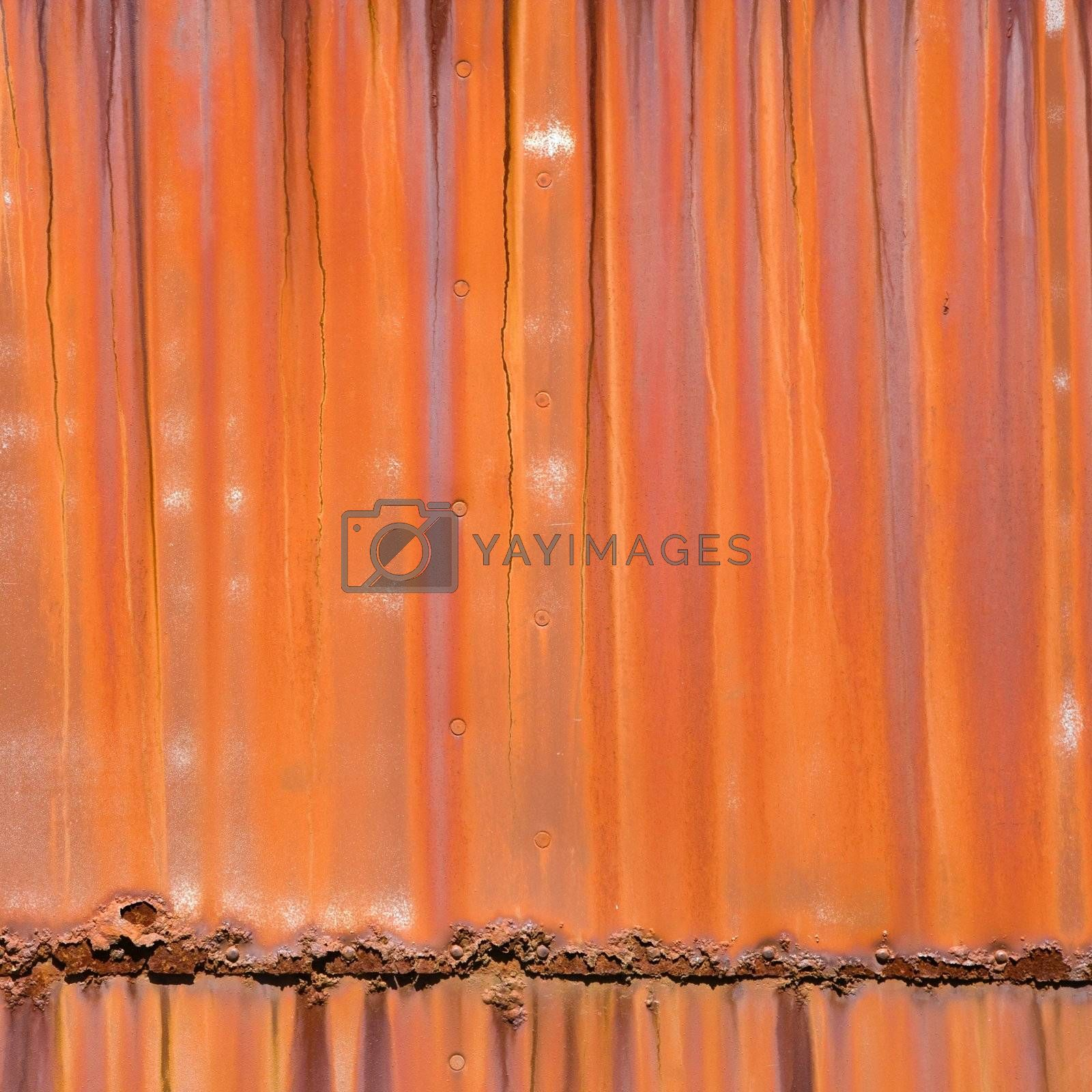 Closeup of metal orange siding.