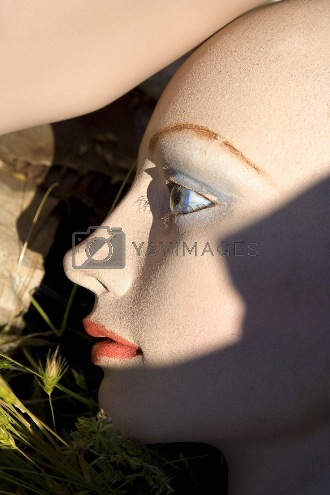 Closeup of face of mannequin on ground.