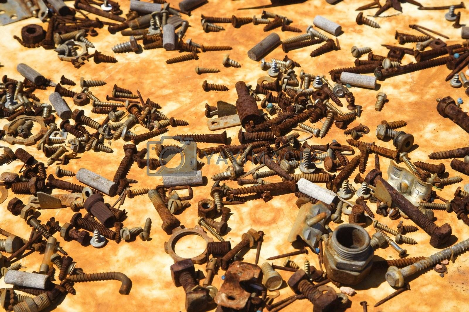 Multiple old rusty nails and screws.