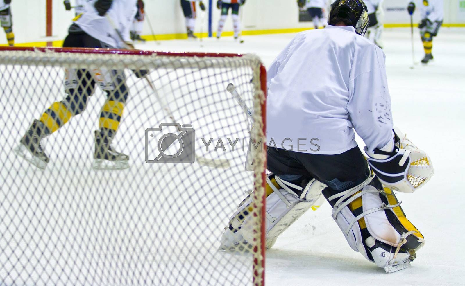 Royalty free image of hockey player during a game by lsantilli