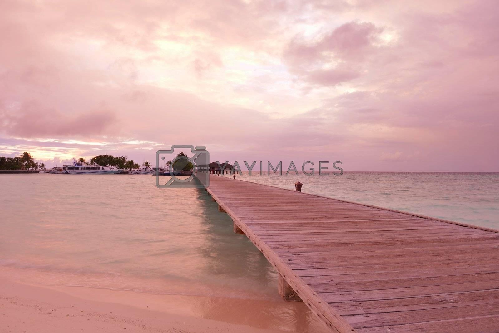 beautiful tropical beach background landscape nature sunset