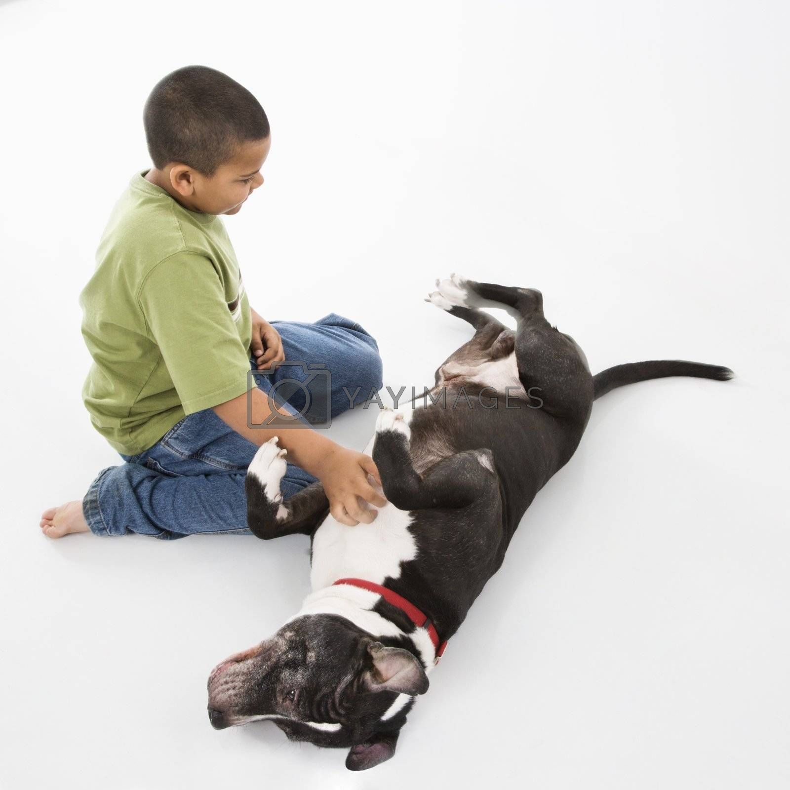 Young hispanic boy petting black and white dog on floor.