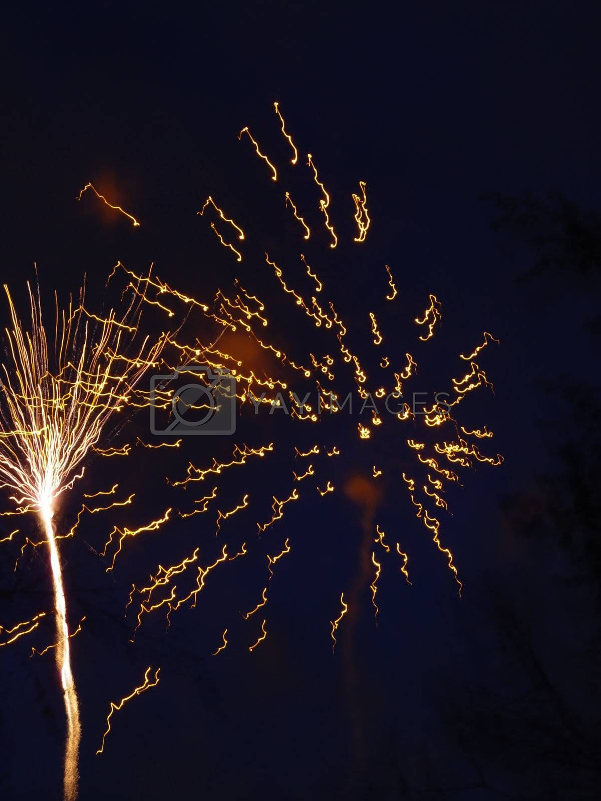 Exploding firework and firework trail  in dark skys