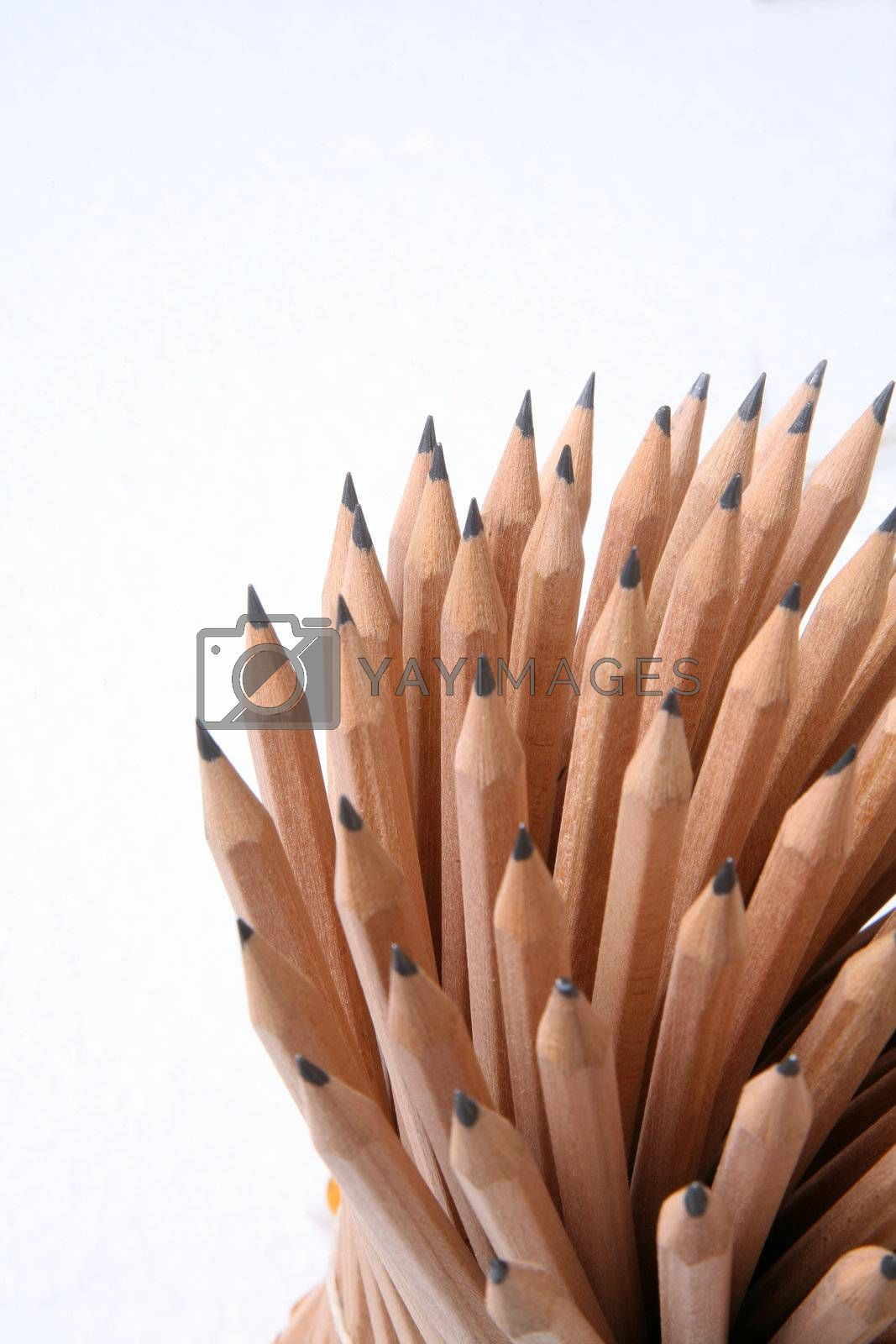 Bunch of pencils isolated on white
