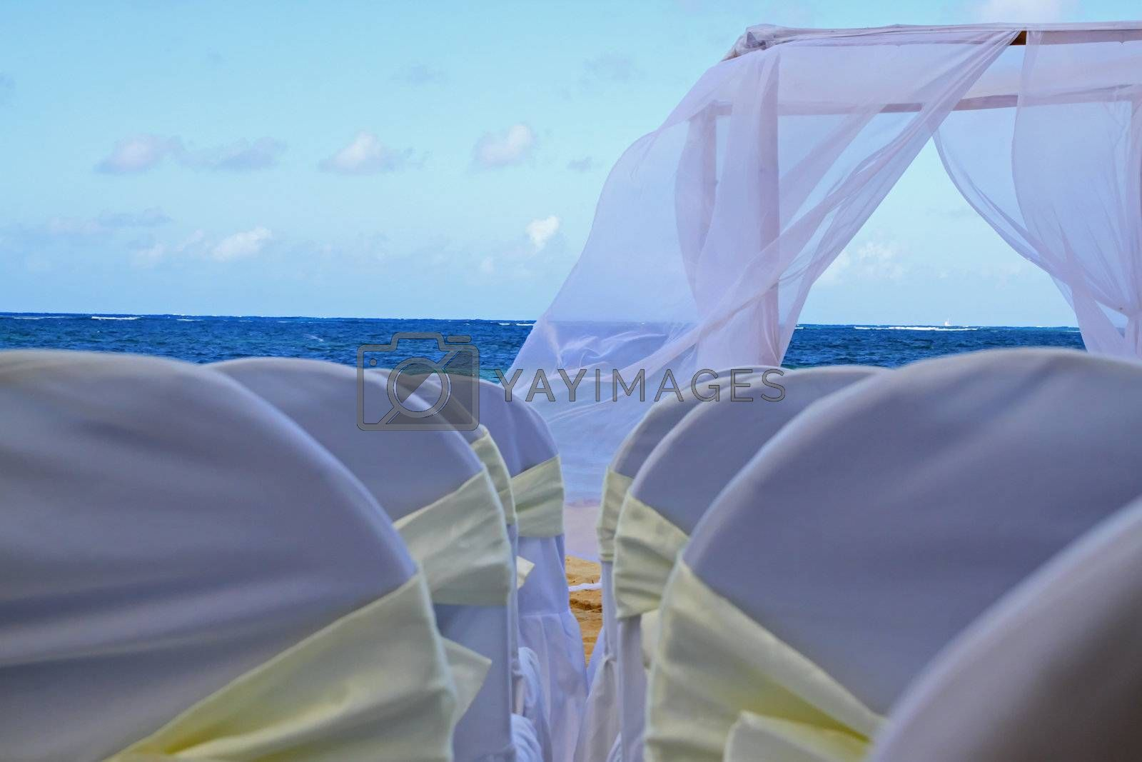 Ribons on chairs laid out for a tropical wedding