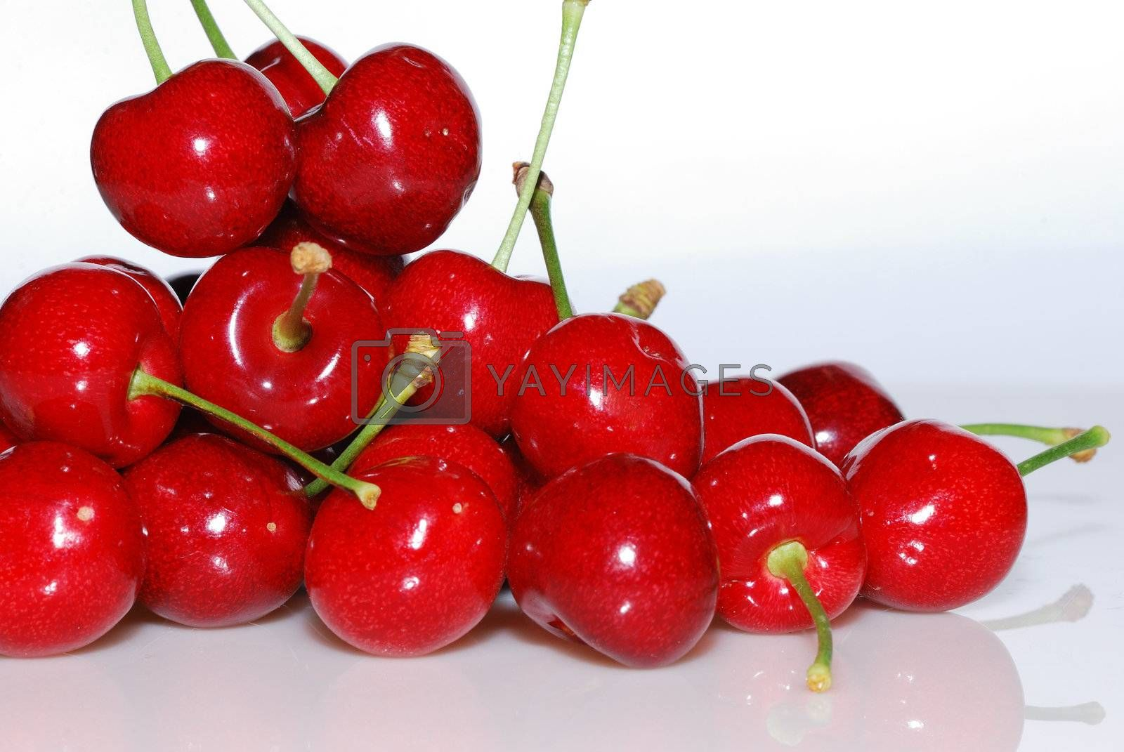 many red ripe cherry crisp in the summer from the garden