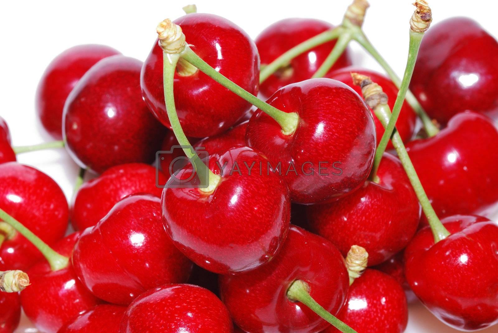 crispy sweet ripe red cherries many large view