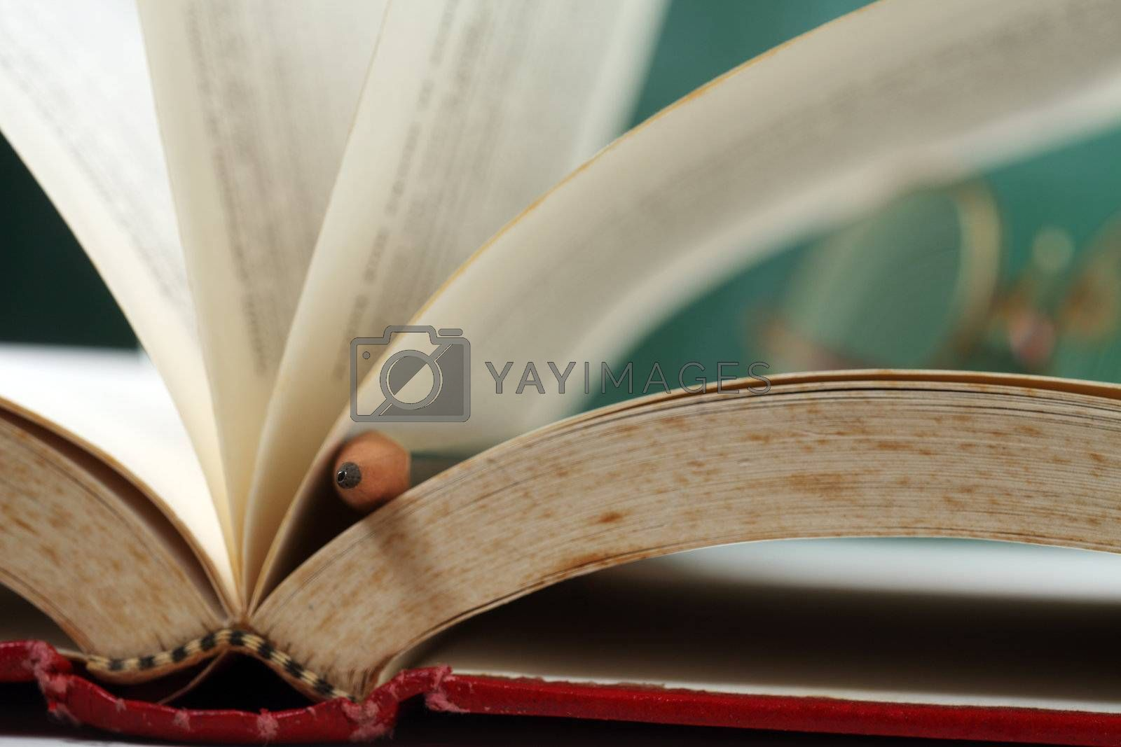 focus on the pencil resting on the book