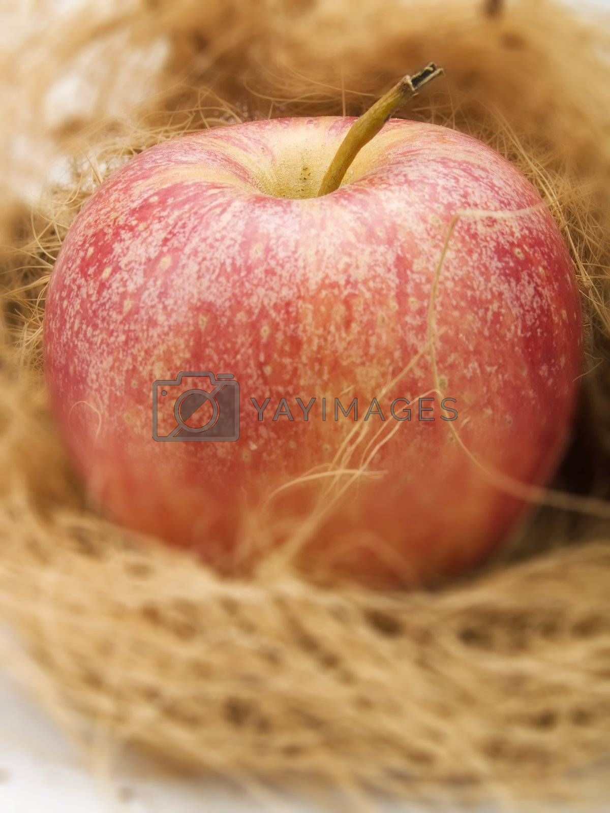 Fresh red apple in a kitchen