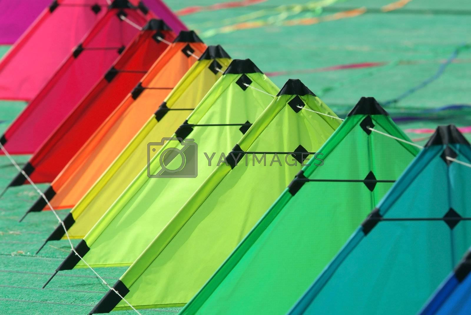 Kites on the ground by epixx